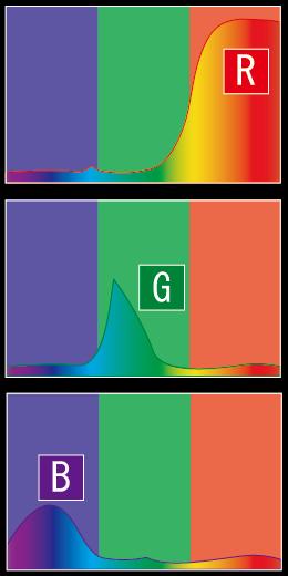 カラー 分光分布曲線 加法原色