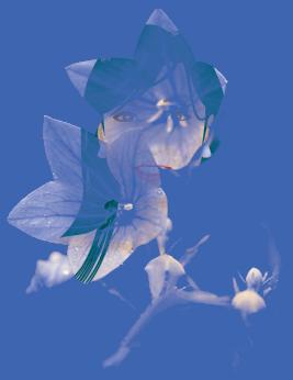 bitmap_mask