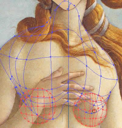 Illustrator グラデーションメッシュ ビーナスを描く 胸メッシュライン