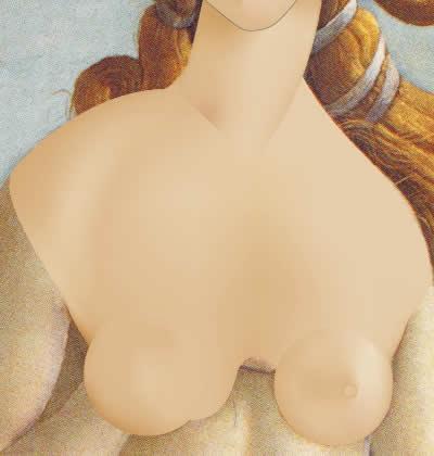 Illustrator グラデーションメッシュ ビーナスを描く 首・胸完成