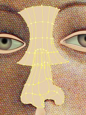 Illustrator グラデーションメッシュ ビーナスを描く 鼻メッシュライン