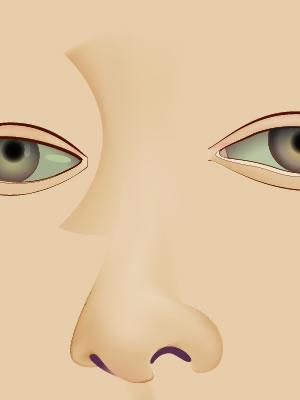 Illustrator グラデーションメッシュ ビーナスを描く 鼻