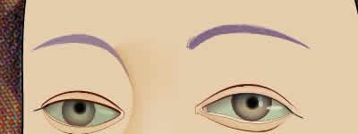 Illustrator グラデーションメッシュ ビーナスを描く 眉