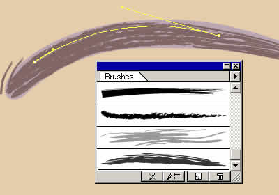 Illustrator グラデーションメッシュ ビーナスを描く 眉詳細図
