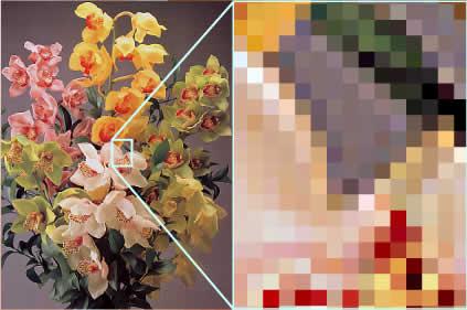 flower_pixel.jpg